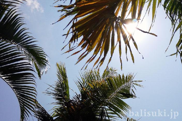 バリ島の雨季乾季