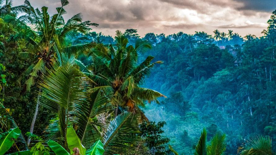 雨の日のバリ島